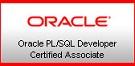 Oracle PL/SQL Developer